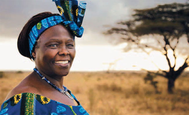 Wangari Maathai- I Will be a Humming Bird